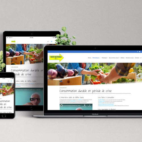 Site internet responsive Printemps21.ch